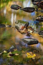 BeaverRun-3559_Edit_1611