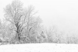 FirstSnow-5993_Edit_1831