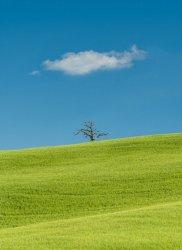 Tuscany-5211080